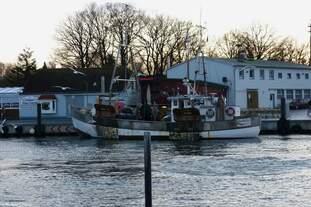 Fischkutter CHARLOTTE (SO7) im Hafen von Niendorf/Ostsee am 02.12.2011
