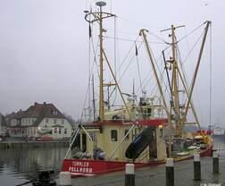 Fischkutter PEL 32 TÜMMLER aus Pellworm ist zu Gast in Neustadt/Holstein (Dezember 2004)