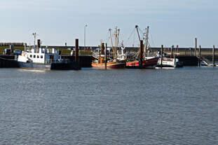 Unterschiedliche kleine Schiffe in Norddeich am 28.02.2015
